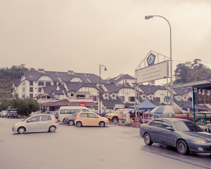Travel Diary_Cameron Highland_18